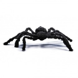 Araignée Velue Noire 75cm
