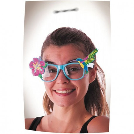 http://www.amiloisirs.com/6025-thickbox_default/lunettes-hibiscus-vente-accessoires-amiloisirs-valence-drome.jpg
