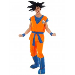 Costume Location Dragon Ball z Sangoku