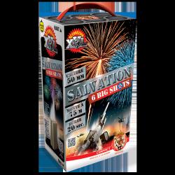 Fusées Zinnia 4 x12