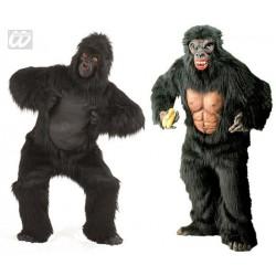 Location costume Gorille adulte