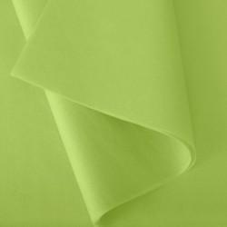 Papier de Soie vert pomme n°20