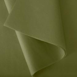 Papier de Soie vert mousse n°55