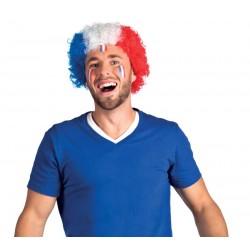 Perruque pop tricolore