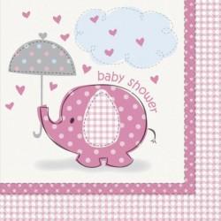 Guirlande Baby Shower fille 1,6m